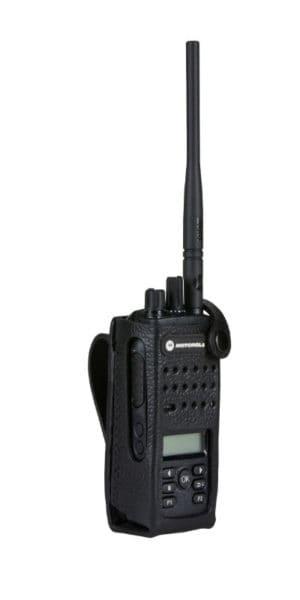 PMLN5863-300x600