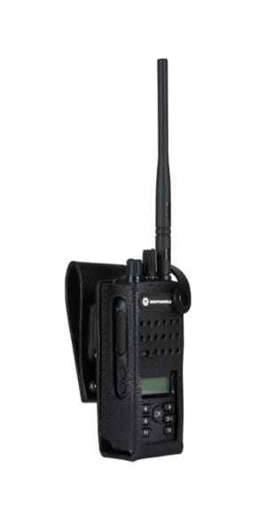 PMLN5865-300x600